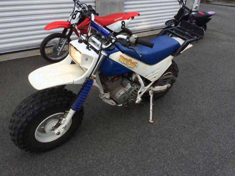 Honda Fat Cat 200 TRW