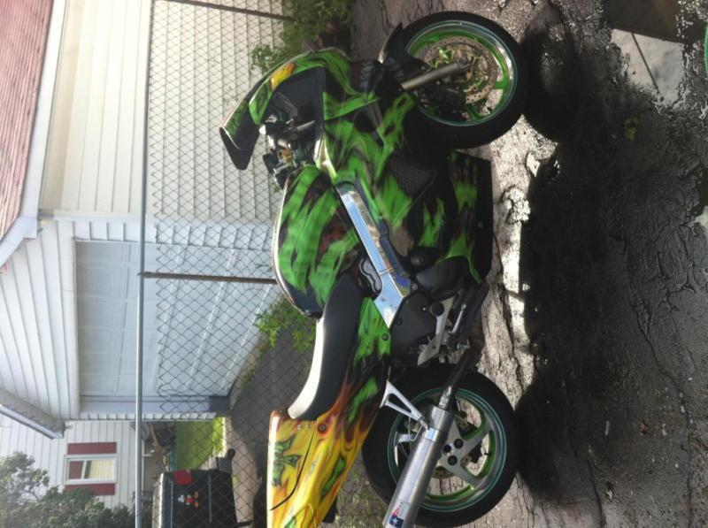 Custom painted bike