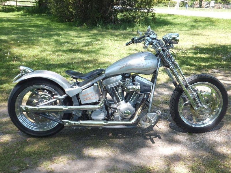 Harley Davidson V-twin Evo with open primary $11,500 obo