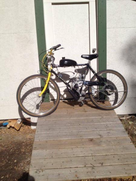 Raleigh Gas Powered Mountain Bike