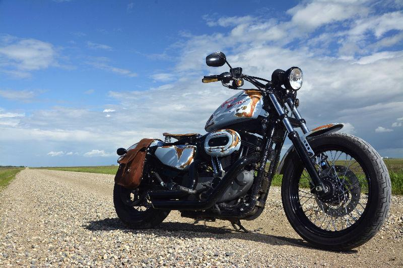 2008 Harley Davidson nightster