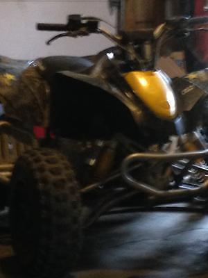 Feeler ad. 2012 can am ds90 x