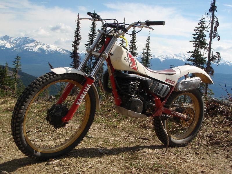 yamaha ty trial 250 brick7 motorcycle. Black Bedroom Furniture Sets. Home Design Ideas