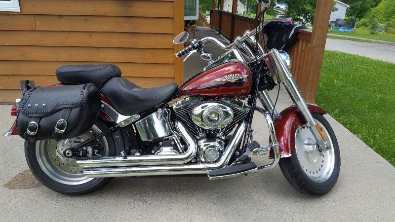 2009 Harley-Davidson FLSTF Fat Boy