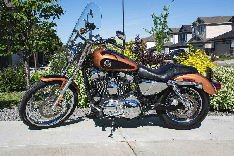 2008 Harley Sportster 1200 105th Anniversary Special