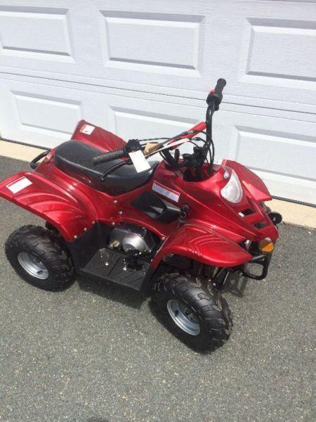 110cc-125cc Mini Atvs