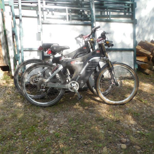 36 Volt Electric E Bikes