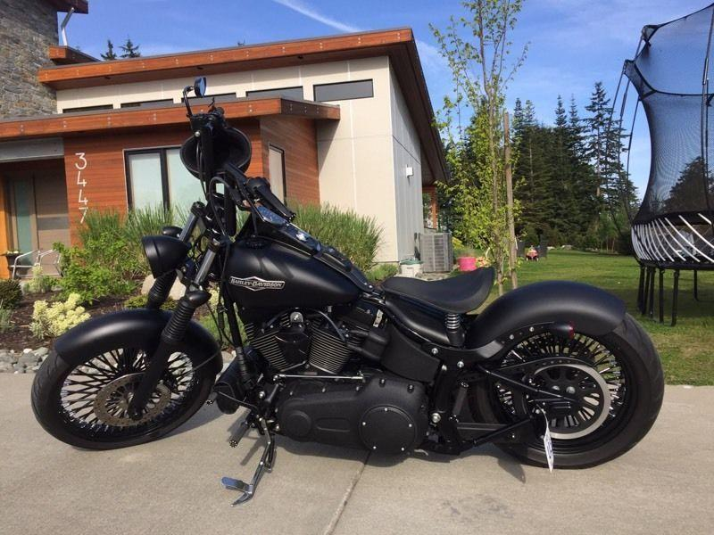 2007 highly custom Harley