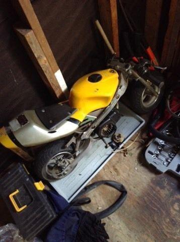 Pocket bike for sale