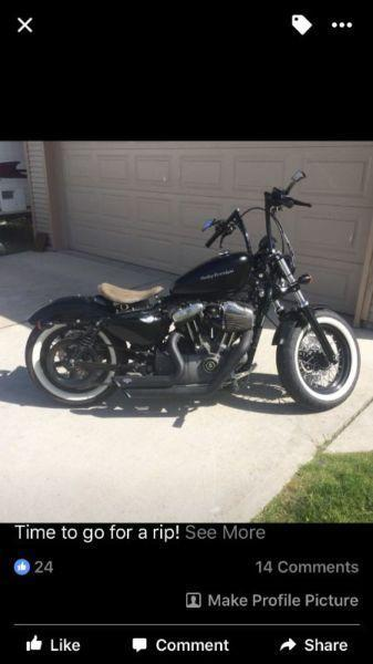 One of a kind nightster