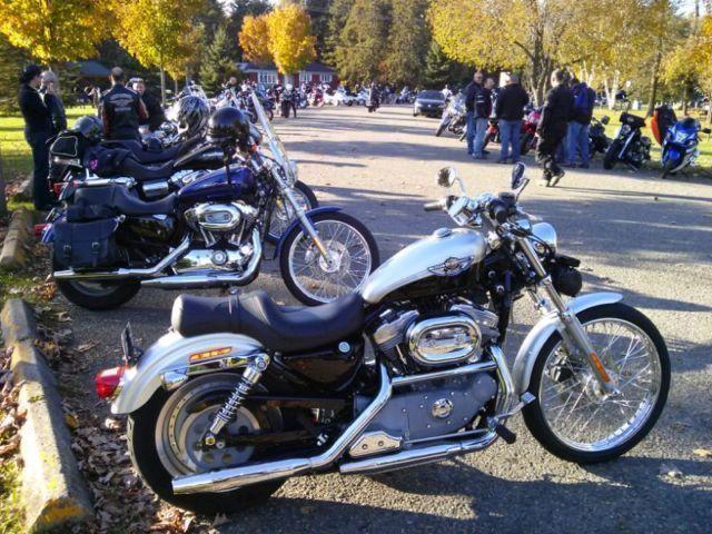 Rare Harley Davidson Sportster 2003 100th ( Showroom ) 10/10