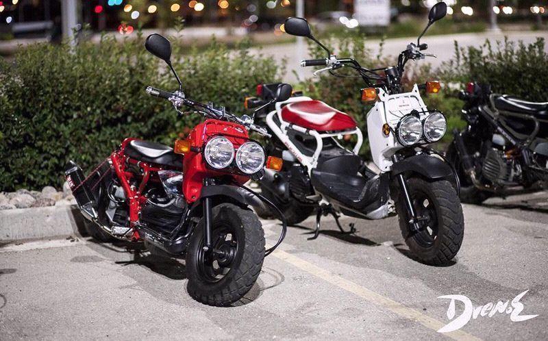 Honda-Ruckus Brand New - Brick7 Motorcycle