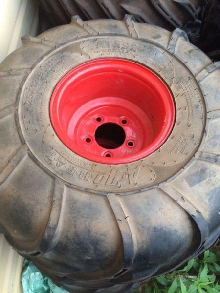 12 Argo tires on rims