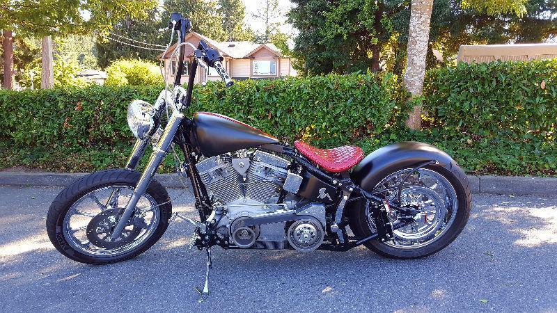 Custom Harley Davidson Softail